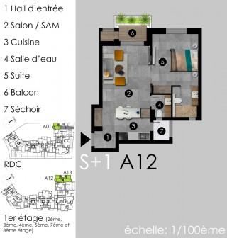Studio Suites Plus